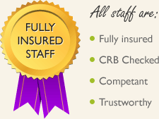 Fully insured cleaners
